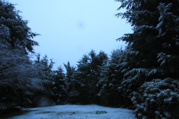 Dec 14 Snow