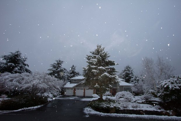 March 22 Snow