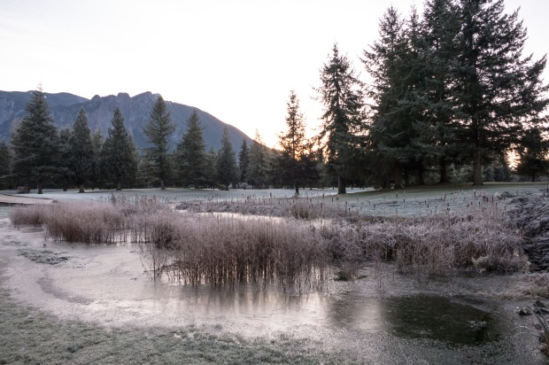 Mt. Si GC, frozen pond between first tee and ninth green