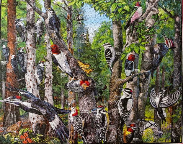Woodpeckers_puzzle