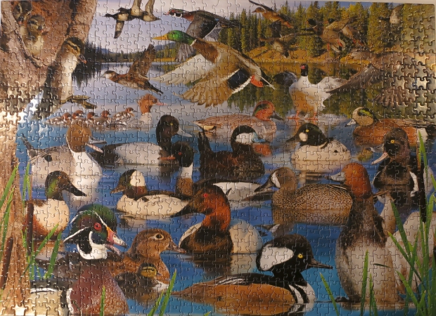 ducks_puzzle