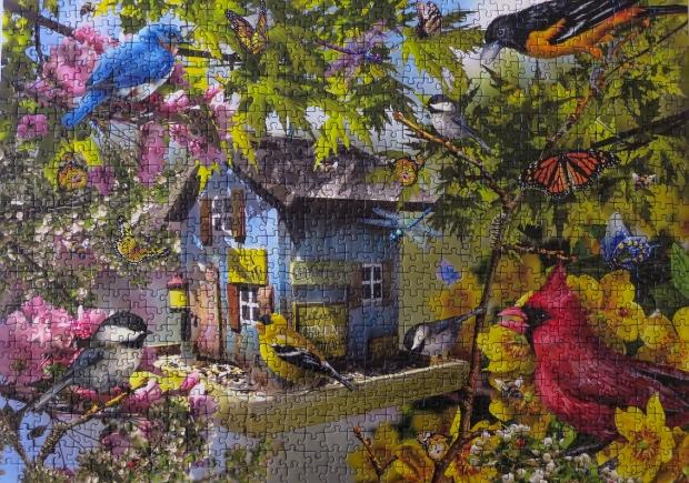 birds_feeder_puzzle