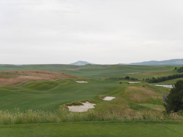 Palouse Ridge, 10th hole. 527 yard from the front tees.