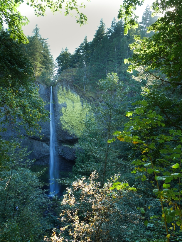 Latourell Falls, 224 feet