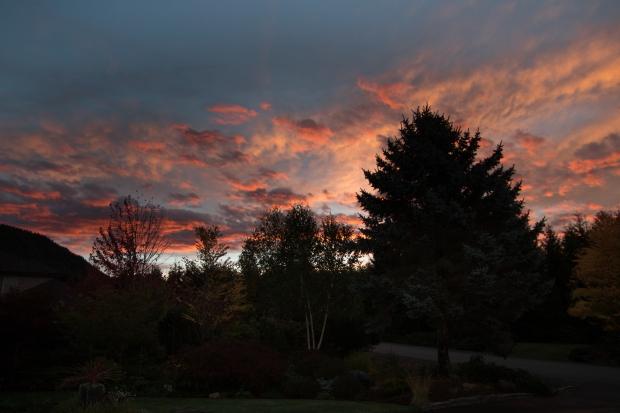 sunrise_0755