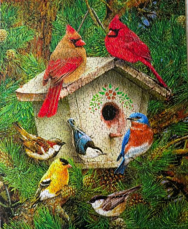 Bird_house_puzzle