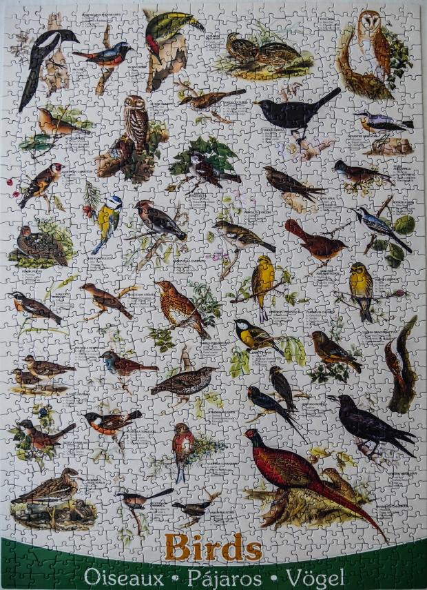 Birds_puzzle
