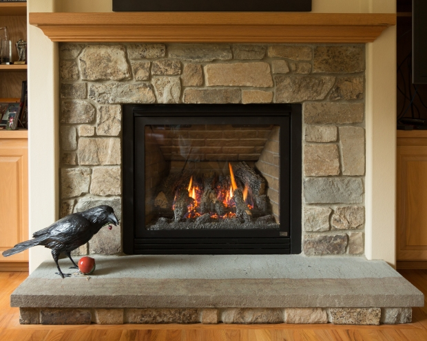 raven_at_fireplace2