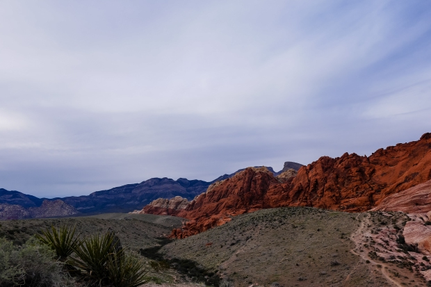 Red_Rock_Canyon_814