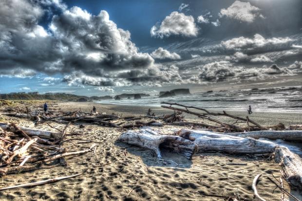 Bandon_Beach_driftwood_0595