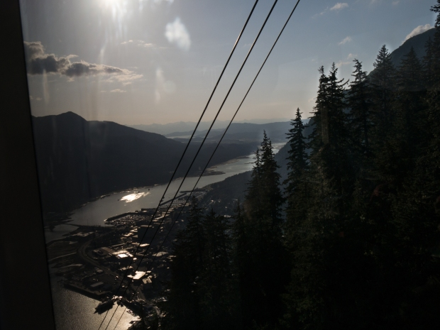 Juneau_harbor_from_Mt_Roberts_Tram_0661 (1 of 1)