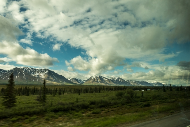 On the bus between Denali and Talkeetna