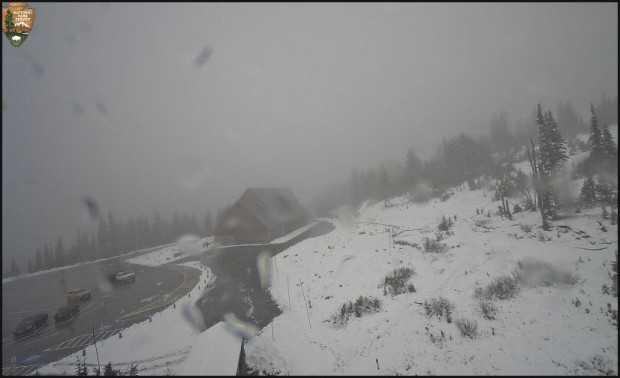 NPS Webcam at Paradise visitor center