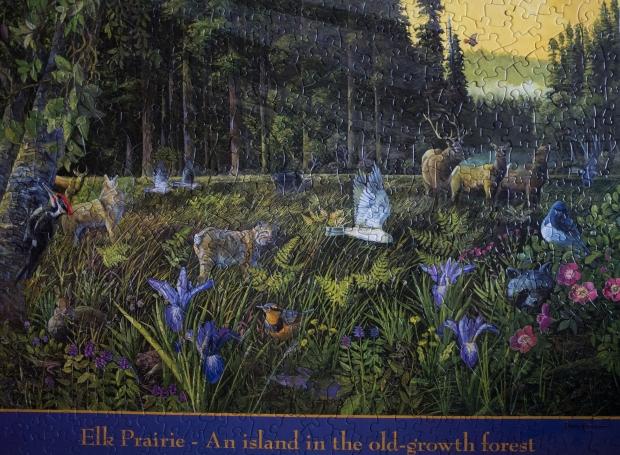 Elk_Prairie_puzzle
