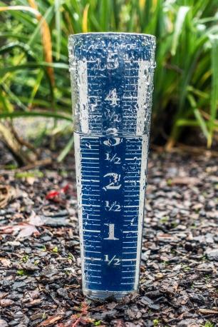rain_gauge_03048