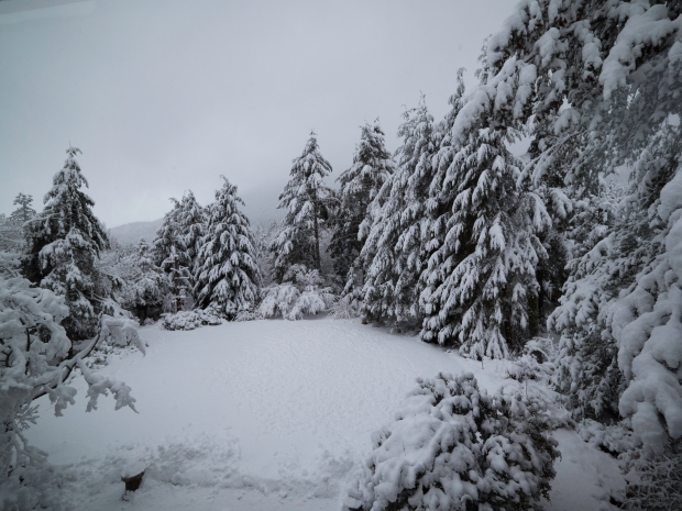 snow_feb_6