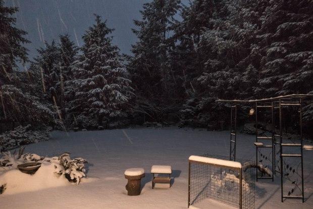 Christmas_snow_1010301