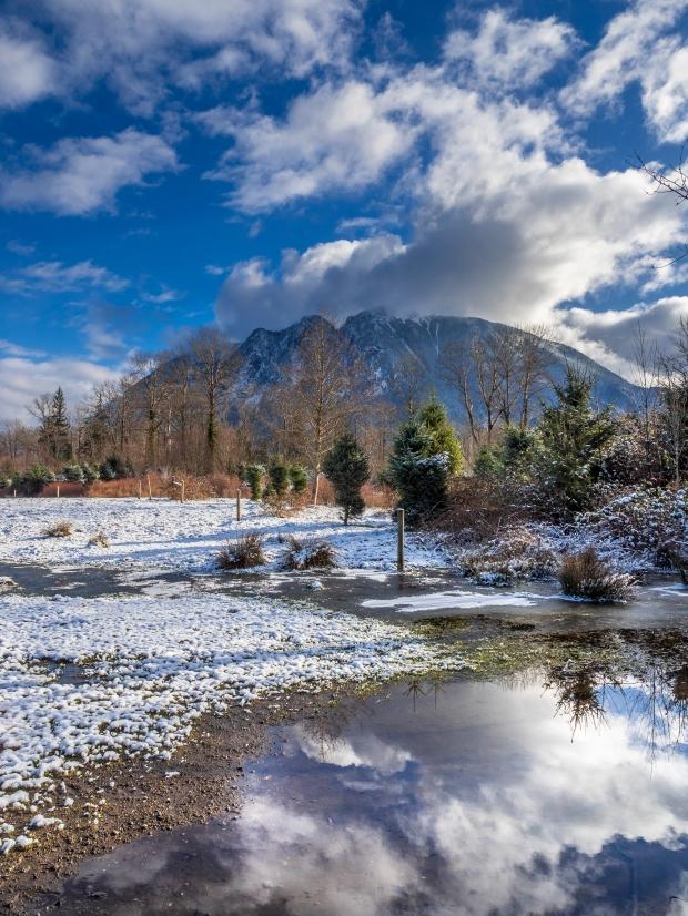 Mt_Si_snowy_sun_1000288_b